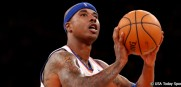 QuentinRichardson_Knicks_2013_USAToday